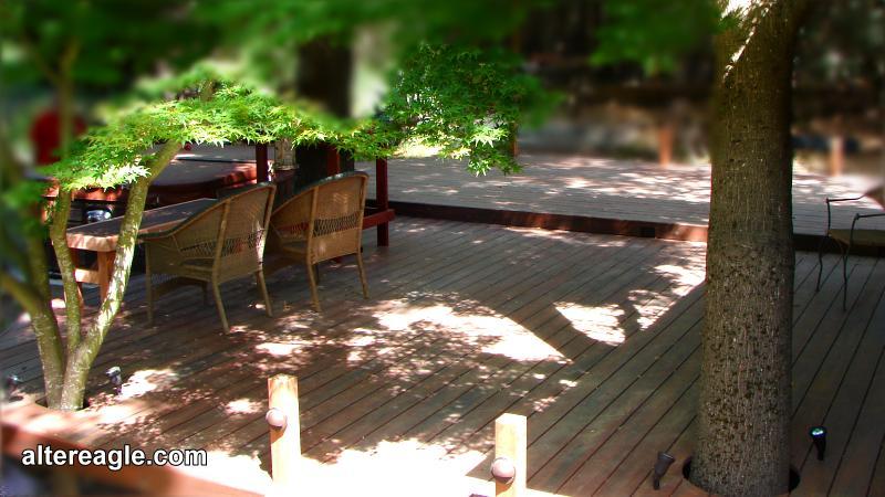 Landscape Deck. Low Voltage Lights Trees And Posts